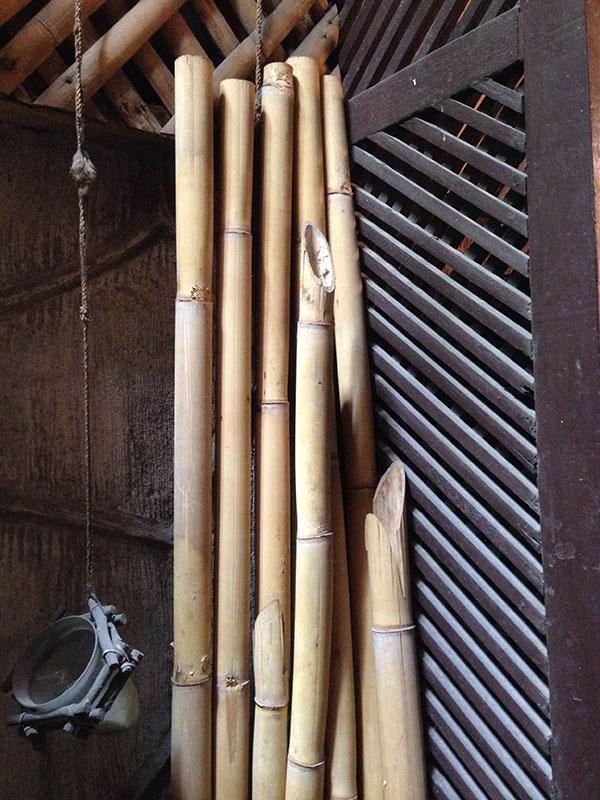 dry bamboo 1