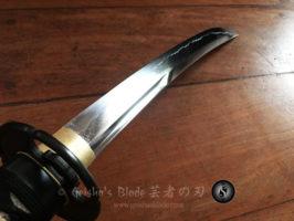 naoshi wak-06